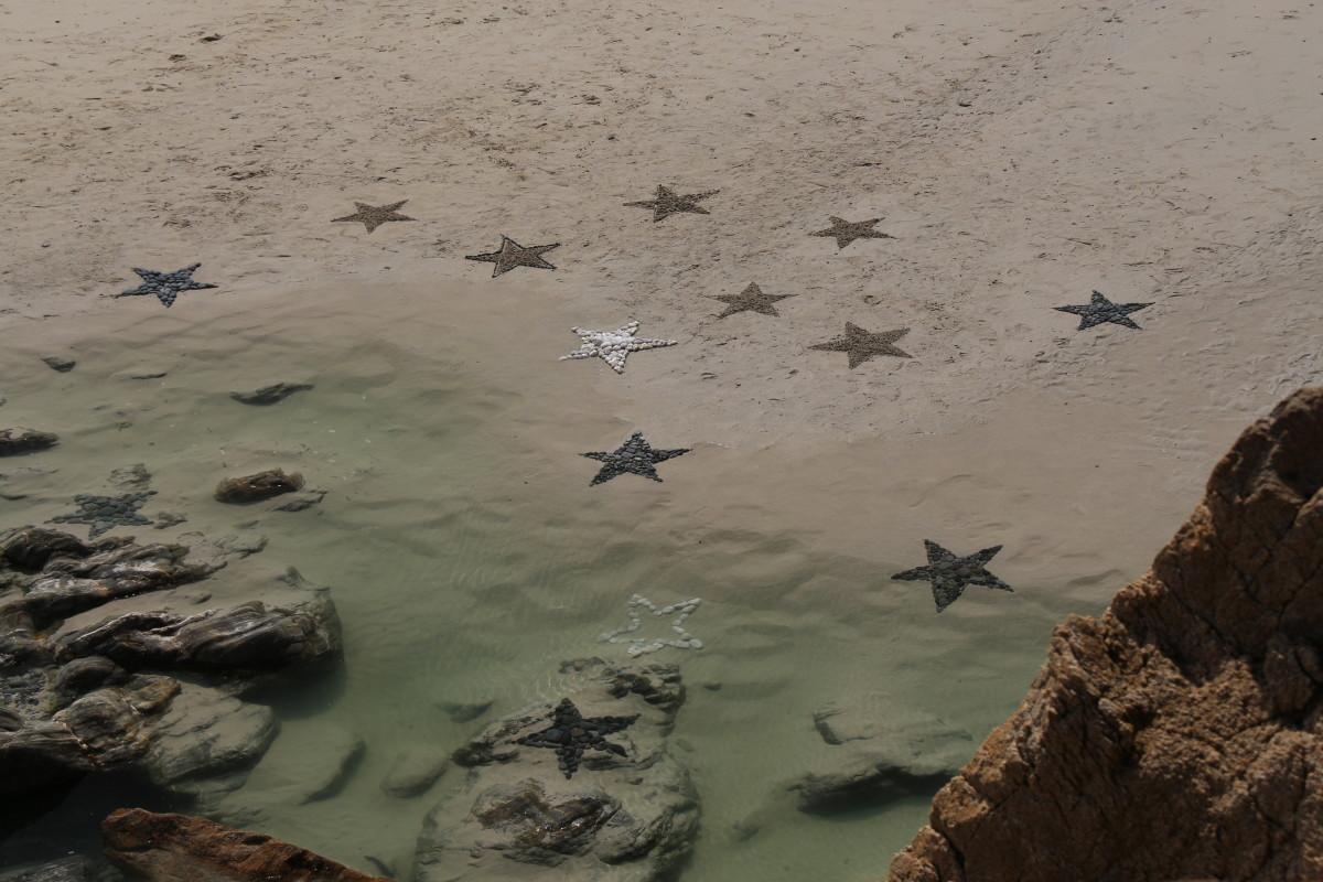 09 Étoiles de mer - Nicolas (68)